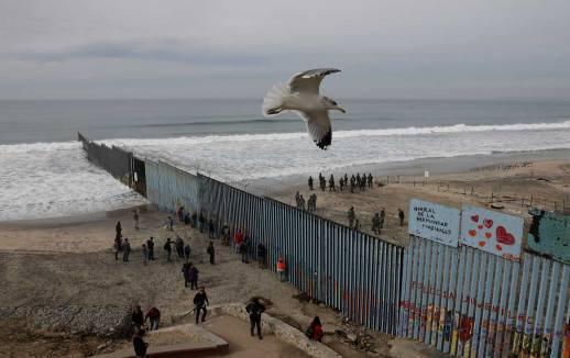 US - Mexico Border bird flew