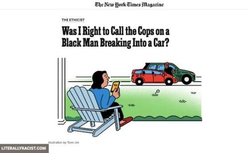calling-the-police-on-black-criminals