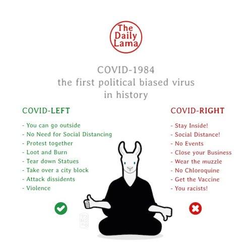 Covid-1984 Left Right